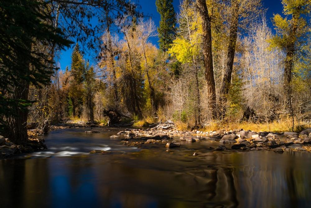 river under blue sky