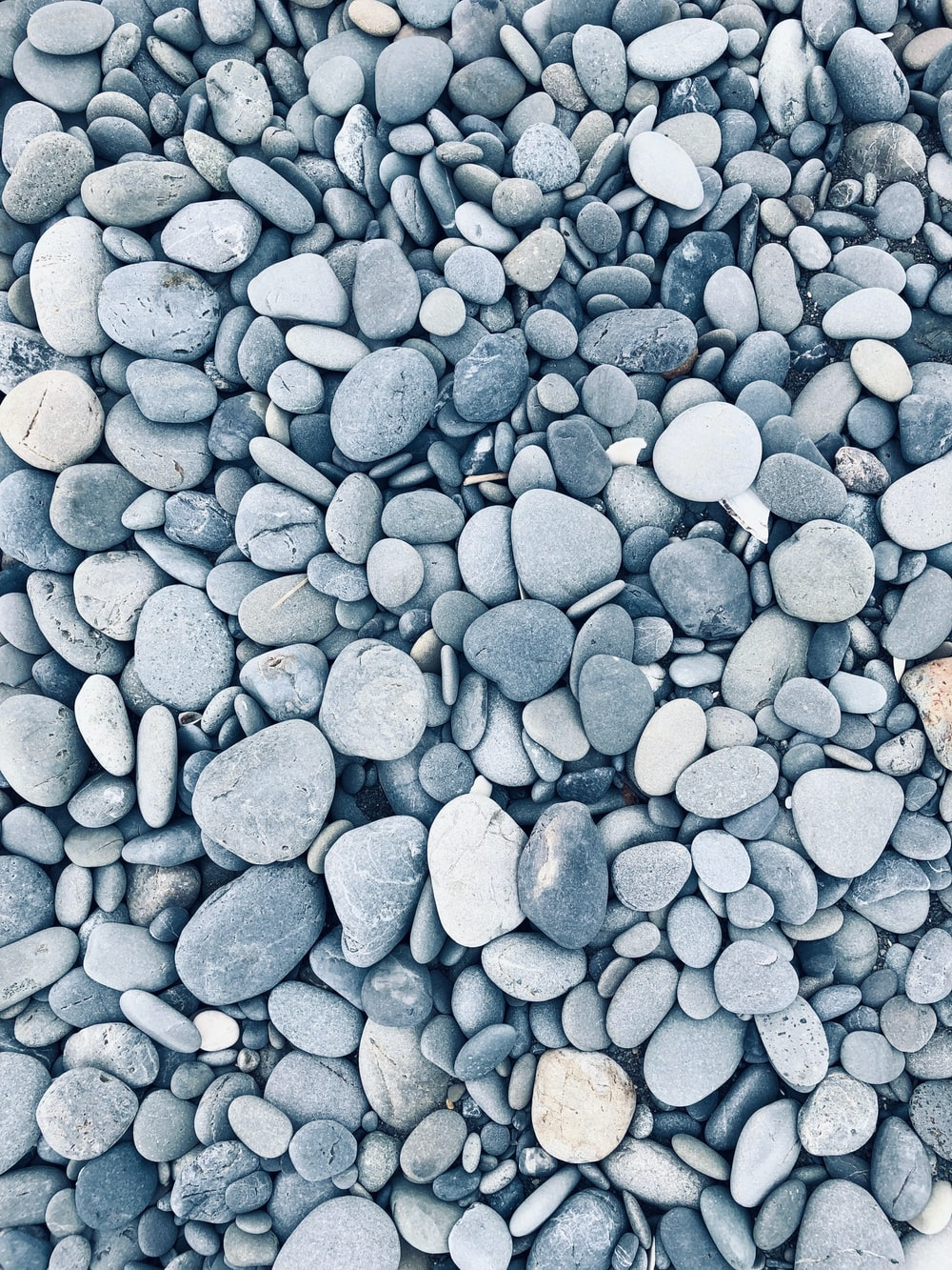 gray rock lot