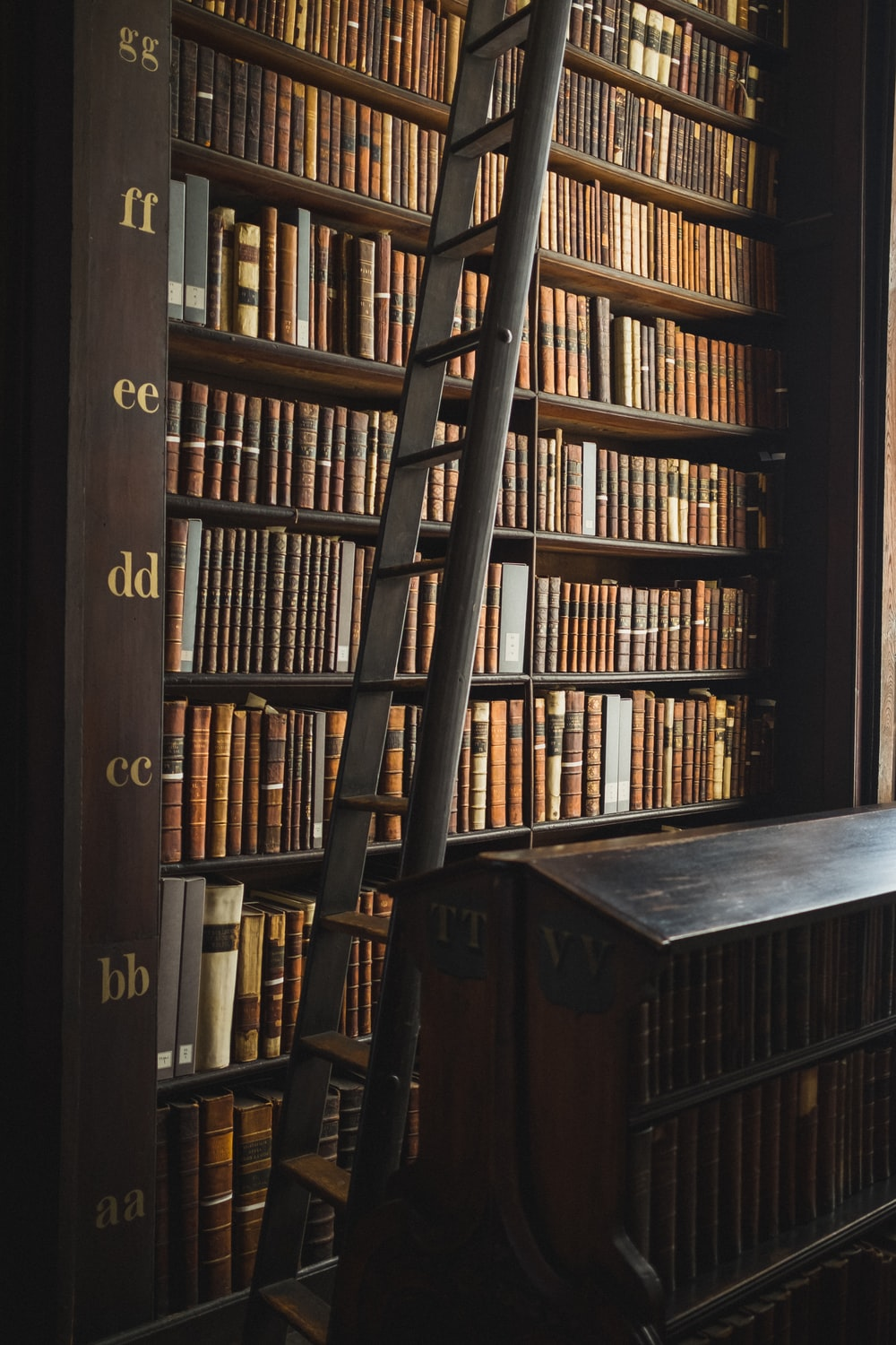 ladder beside bookcase with books