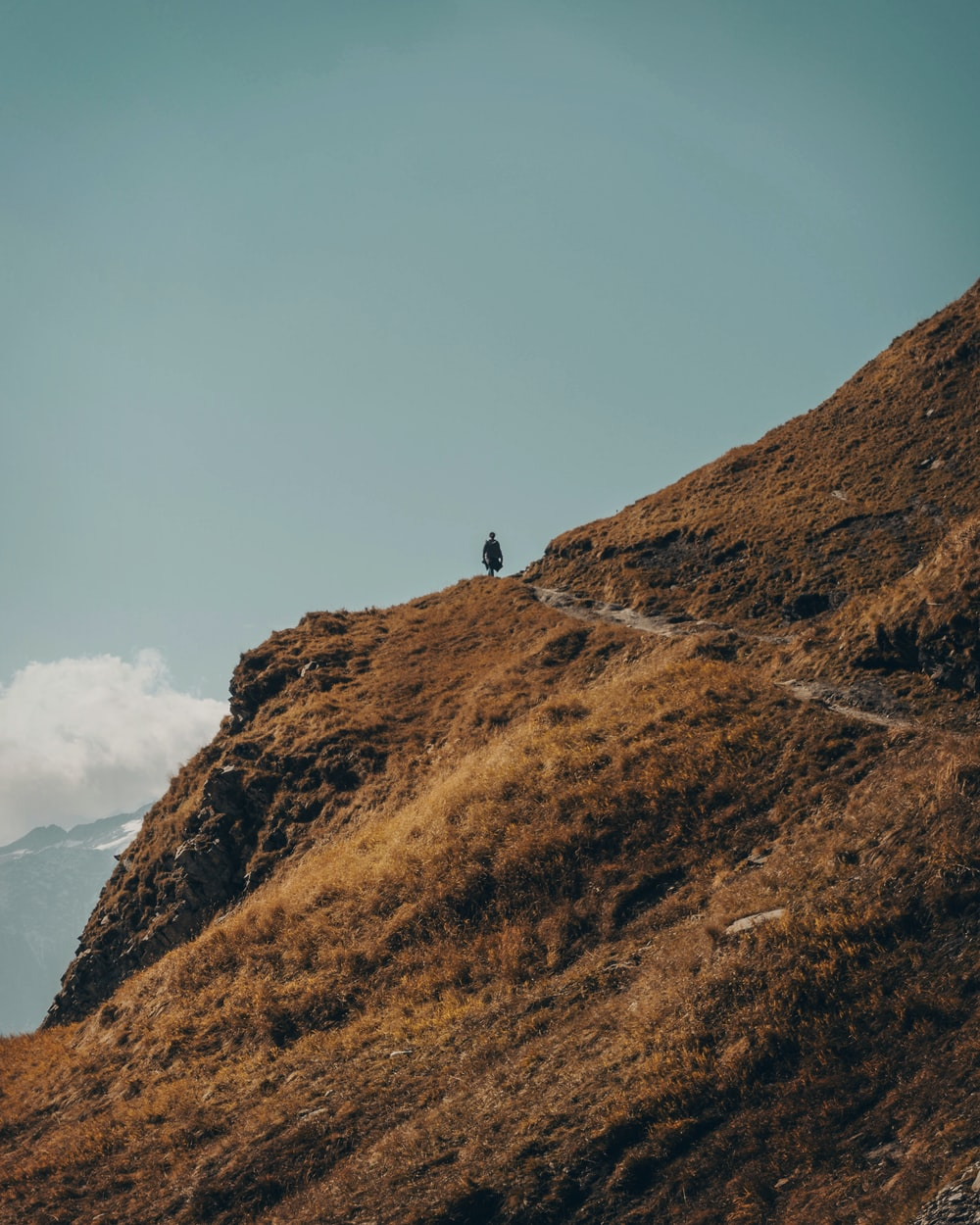 person standing on brown mountain