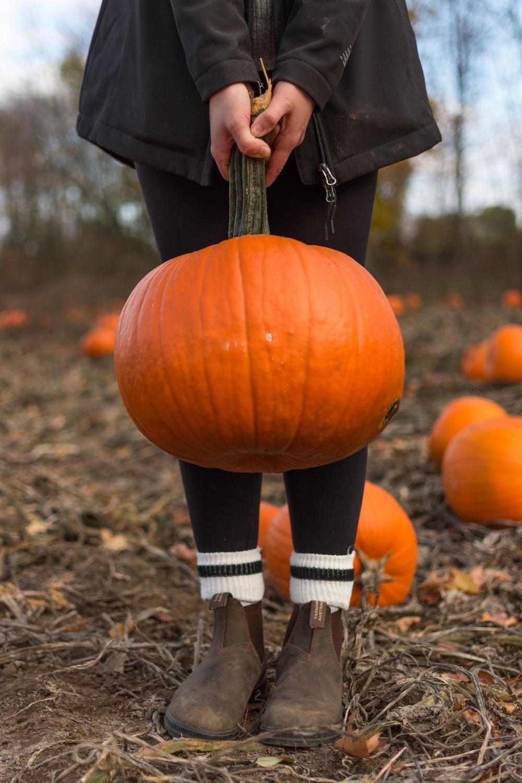 child carrying orange pumpkin