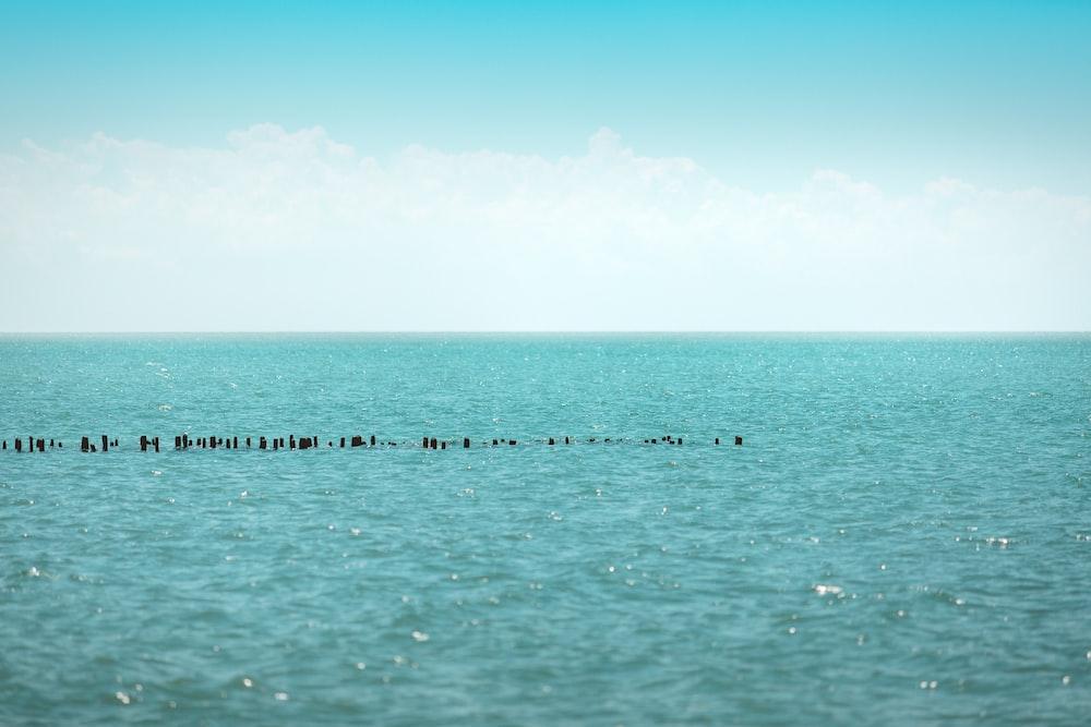 calm seas under clear skies