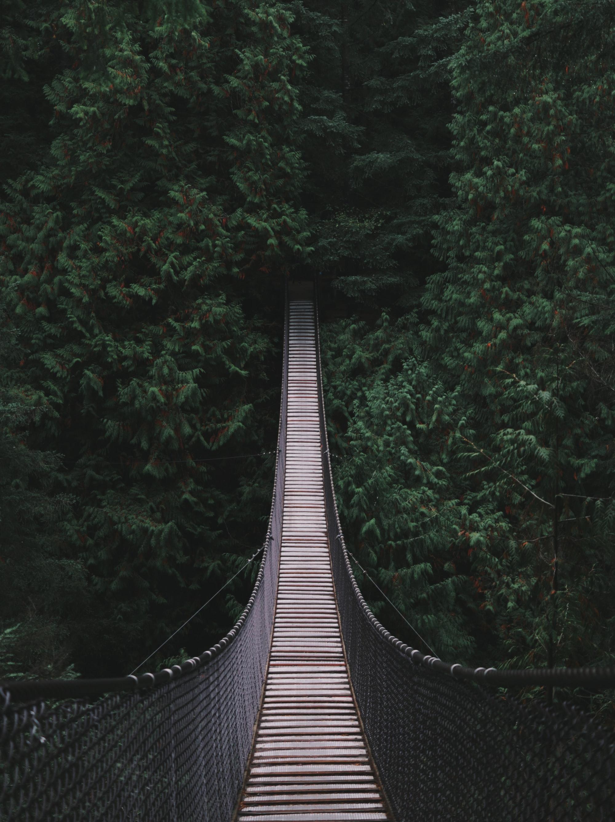 Bridging the Gap (Virtually)