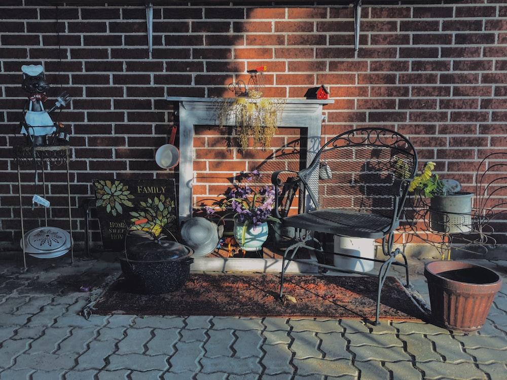 plants on pots