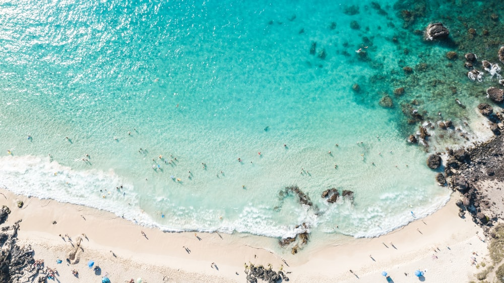 aerial photography of sea shore during daytime