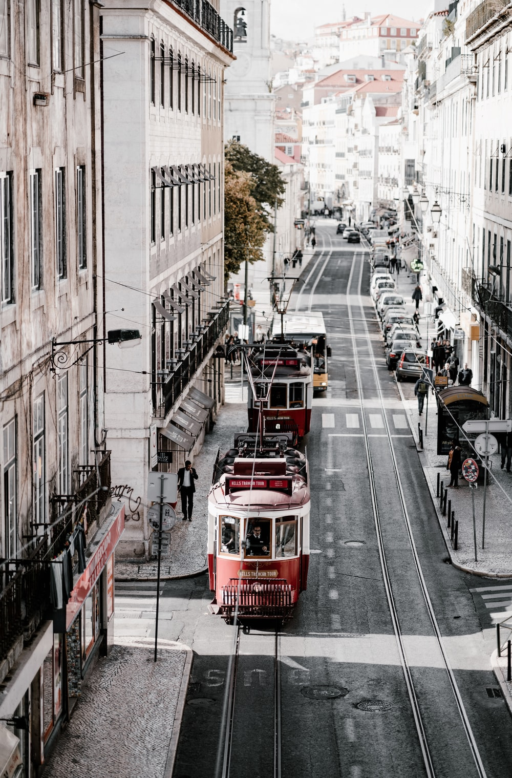 two red trams in city