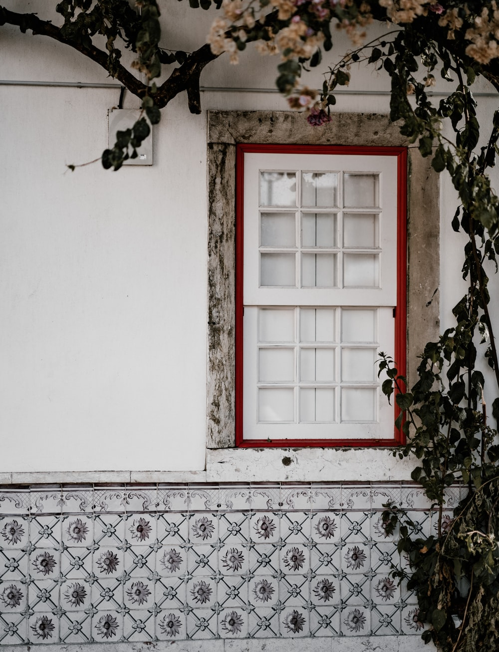 Weathered pink and green facade, Lisbon | HD photo by Annie Spratt on