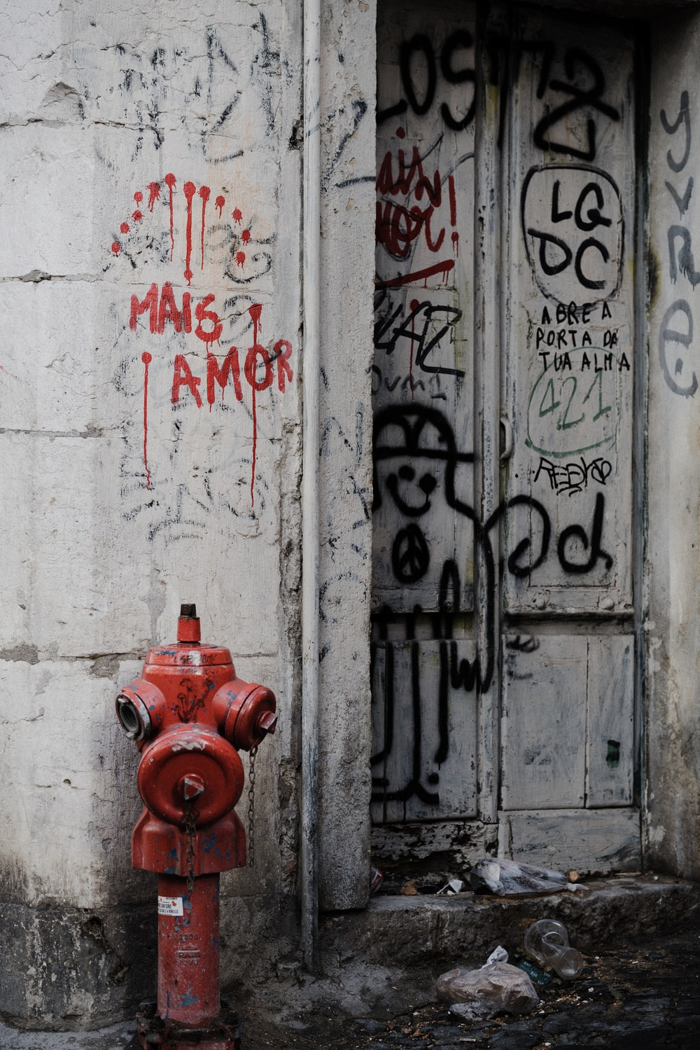 red fire hydrant beside white wooden door