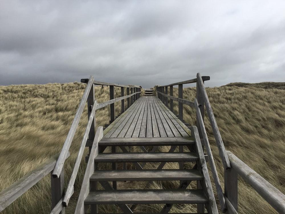brown wooden bridge leading to grass field
