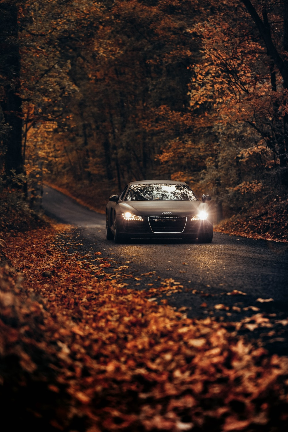 500 Audi Pictures Hd Download Free Images On Unsplash