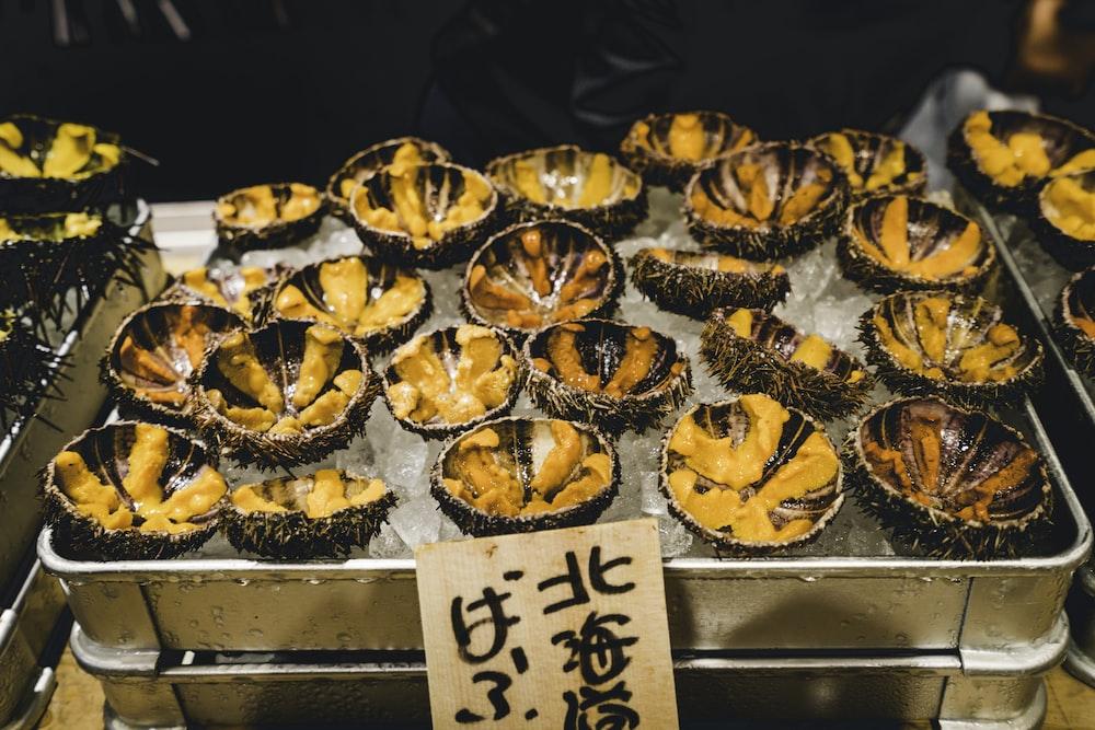 sea urchins on ice