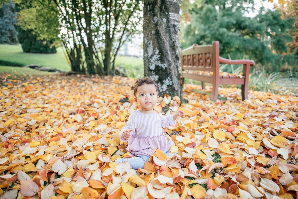 toddler sitting on leaf-covered ground near bench during daytime