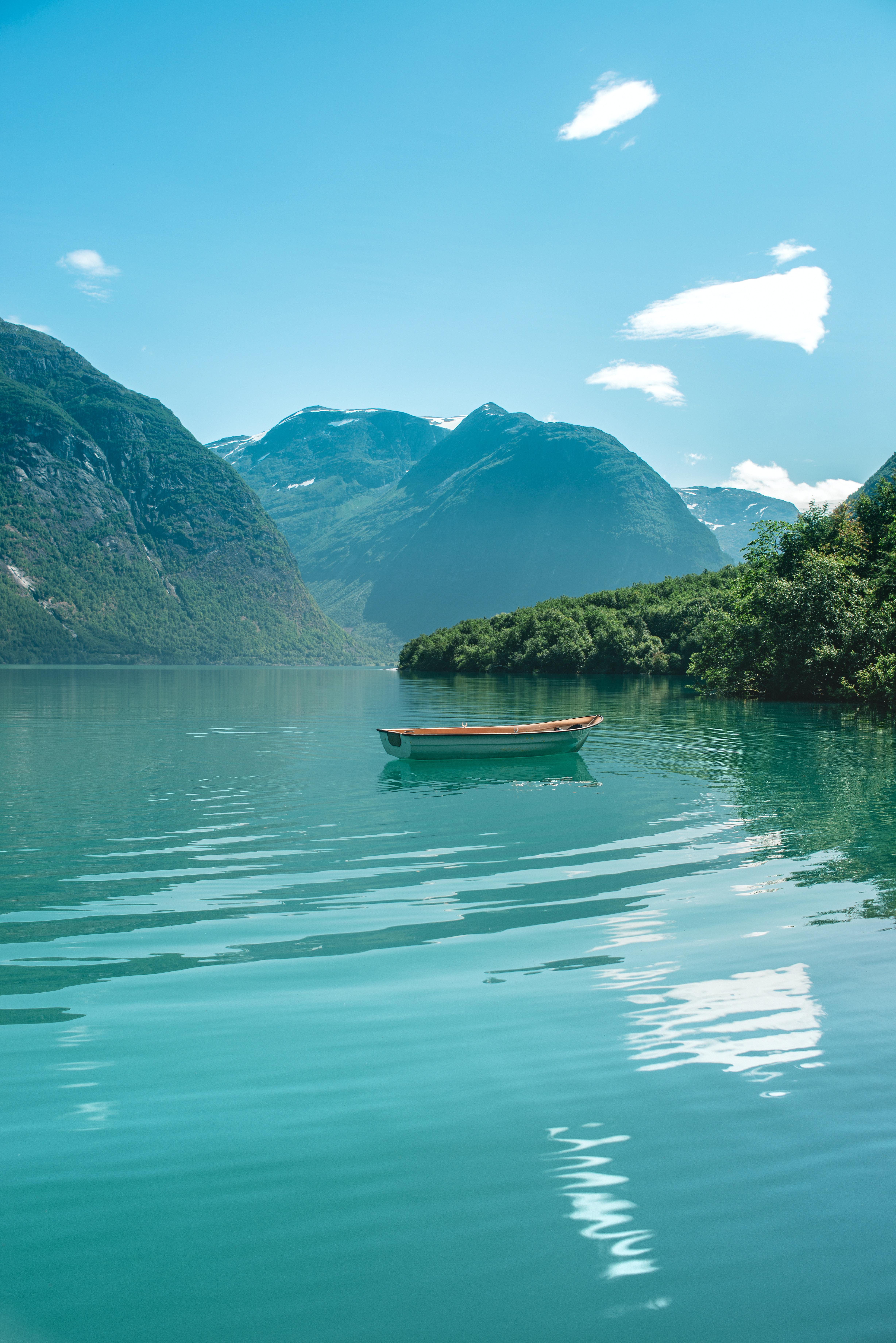 white wooden boat near trees