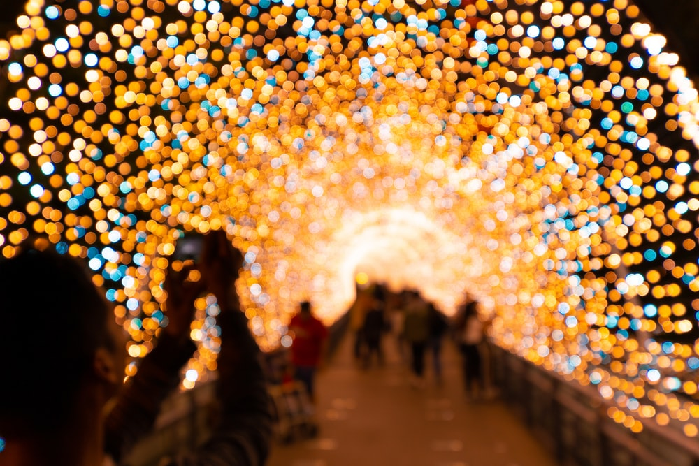 people under yellow bokeh lights