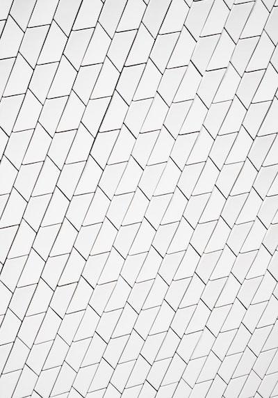 white and black lines illustration