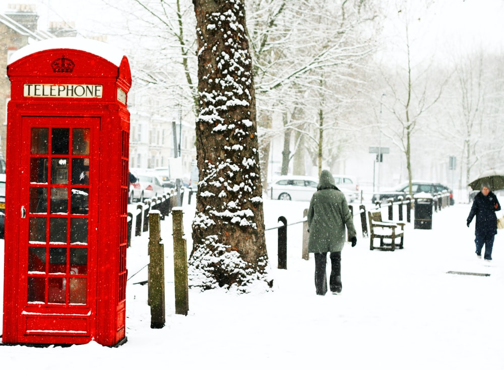person walking near tree and phonebooth during winter season