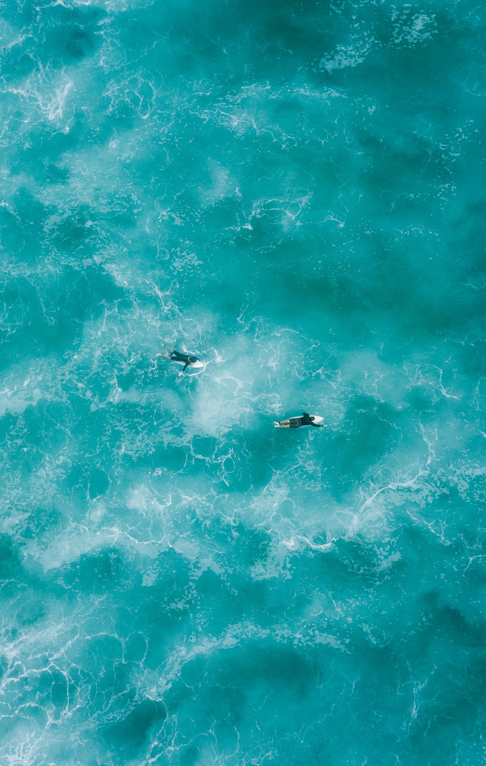 two people surfing on water