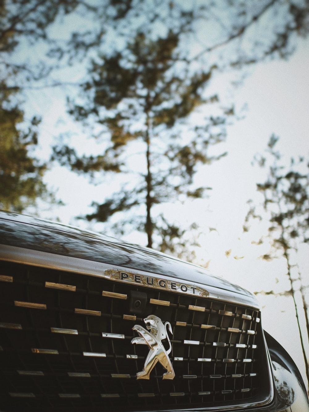 close-up photography of Peugeot grille