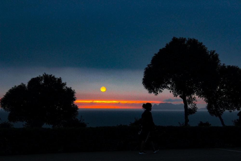 silhouette of woman walking near trees