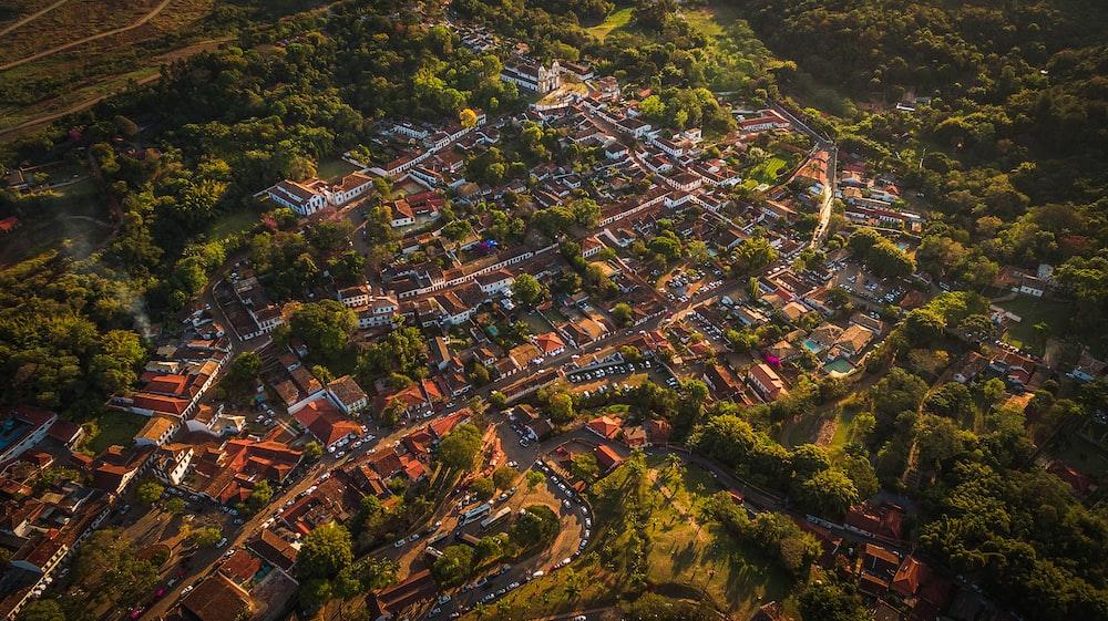 bird's-eye photography of city near trees