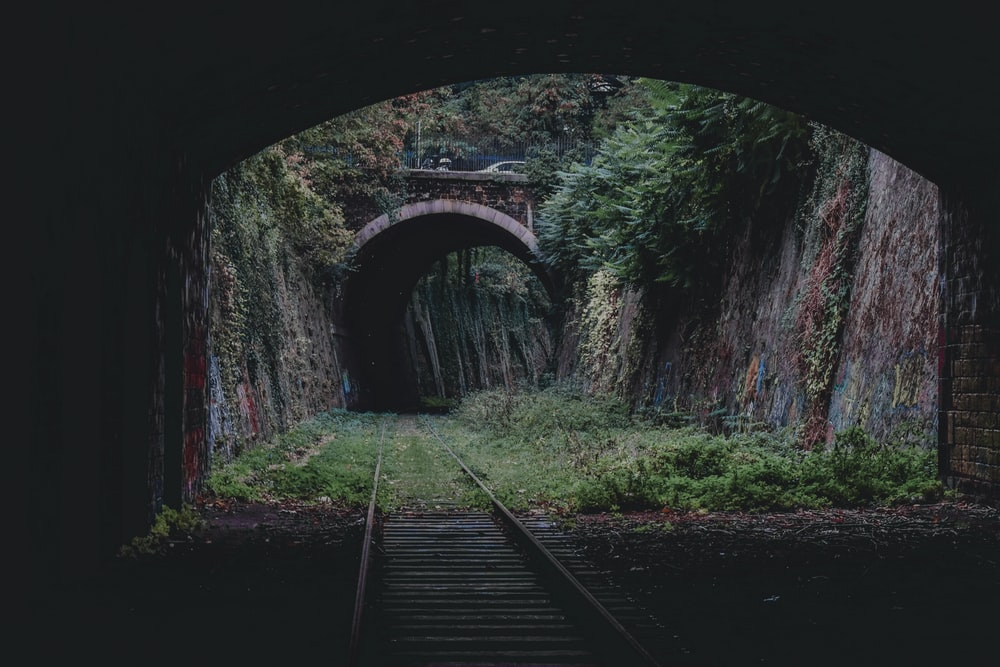 train rail track near trees