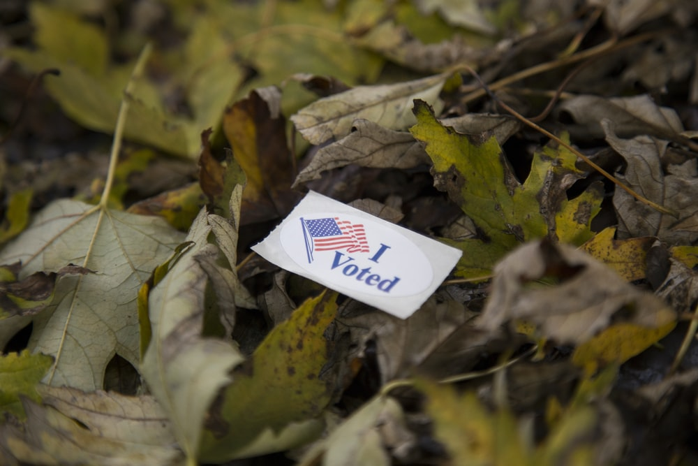 I Voted coupon on green and brown leaves during daytime