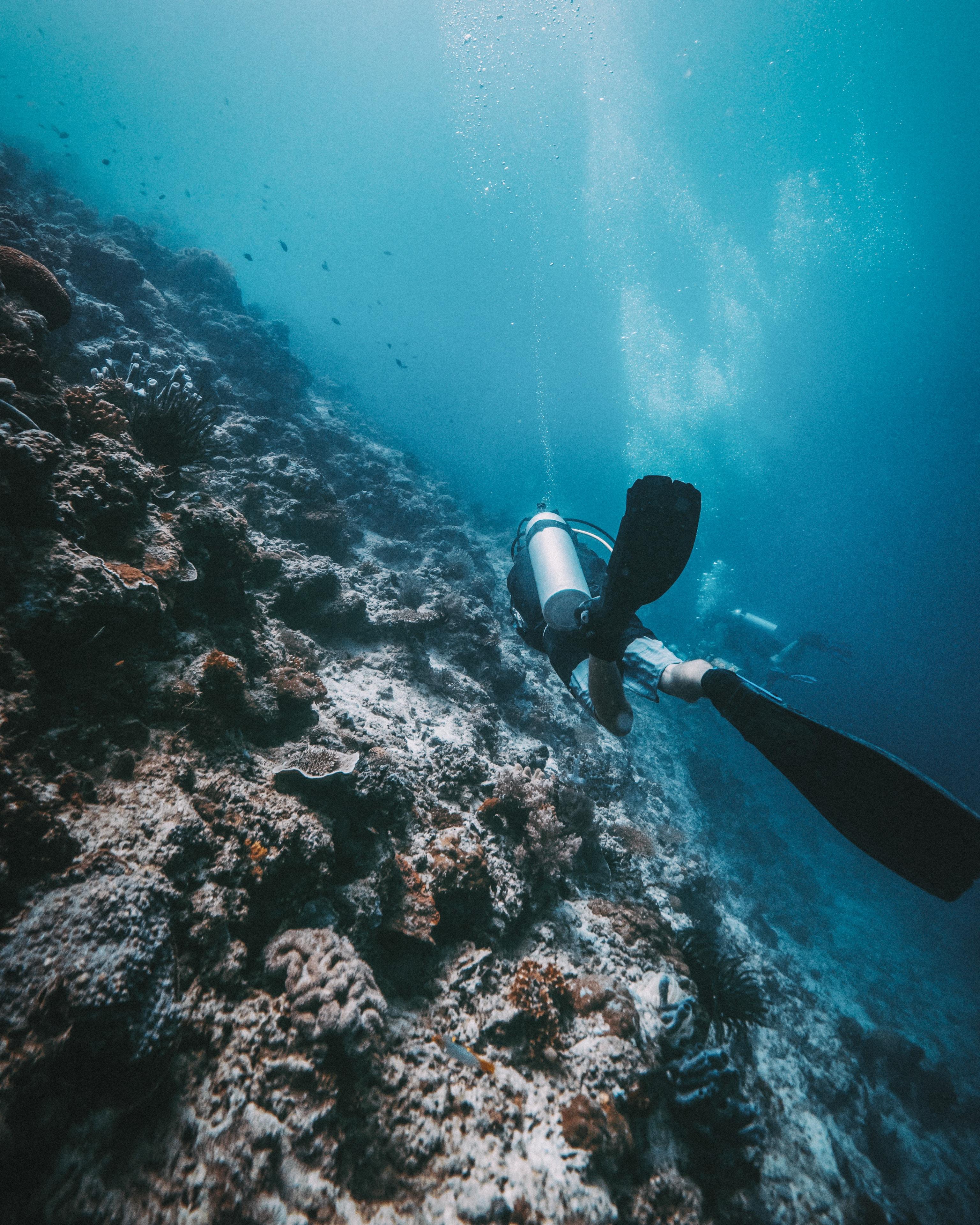 person performing scuba diving