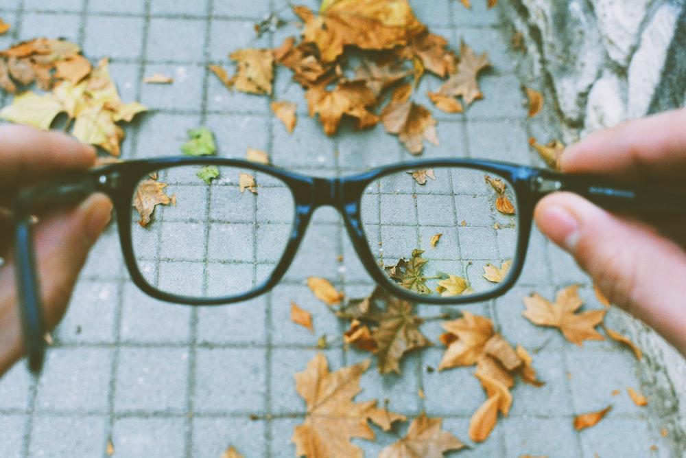 person holding black-framed eyeglasses