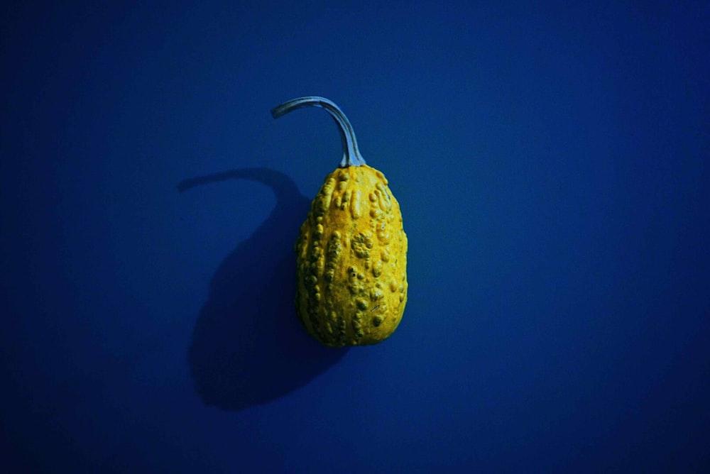 yellow vegetable
