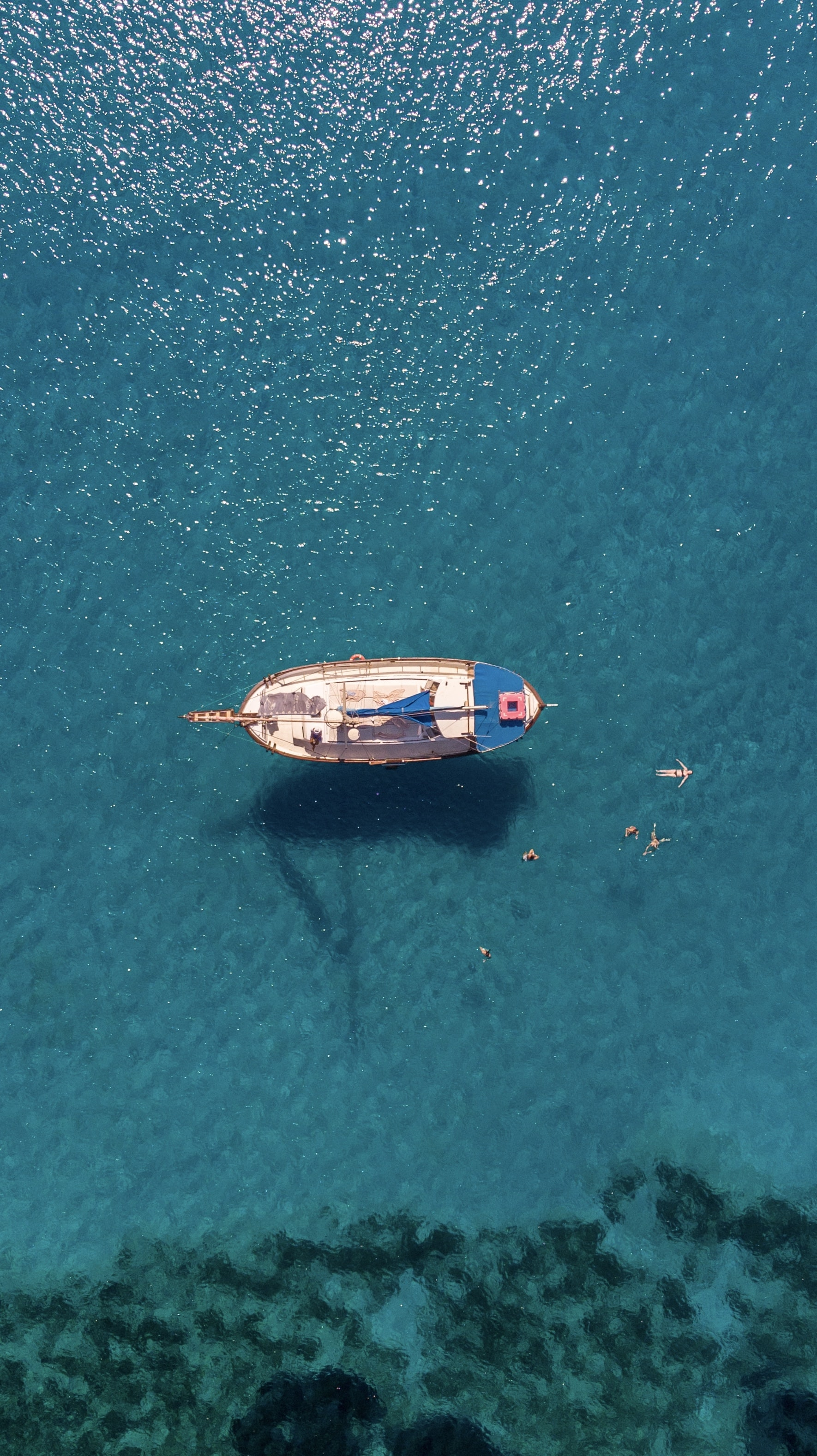 blue and white sailboat on body of water