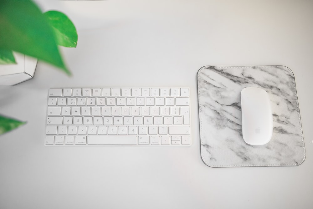 Magic Keyboard beside Magic Mouse