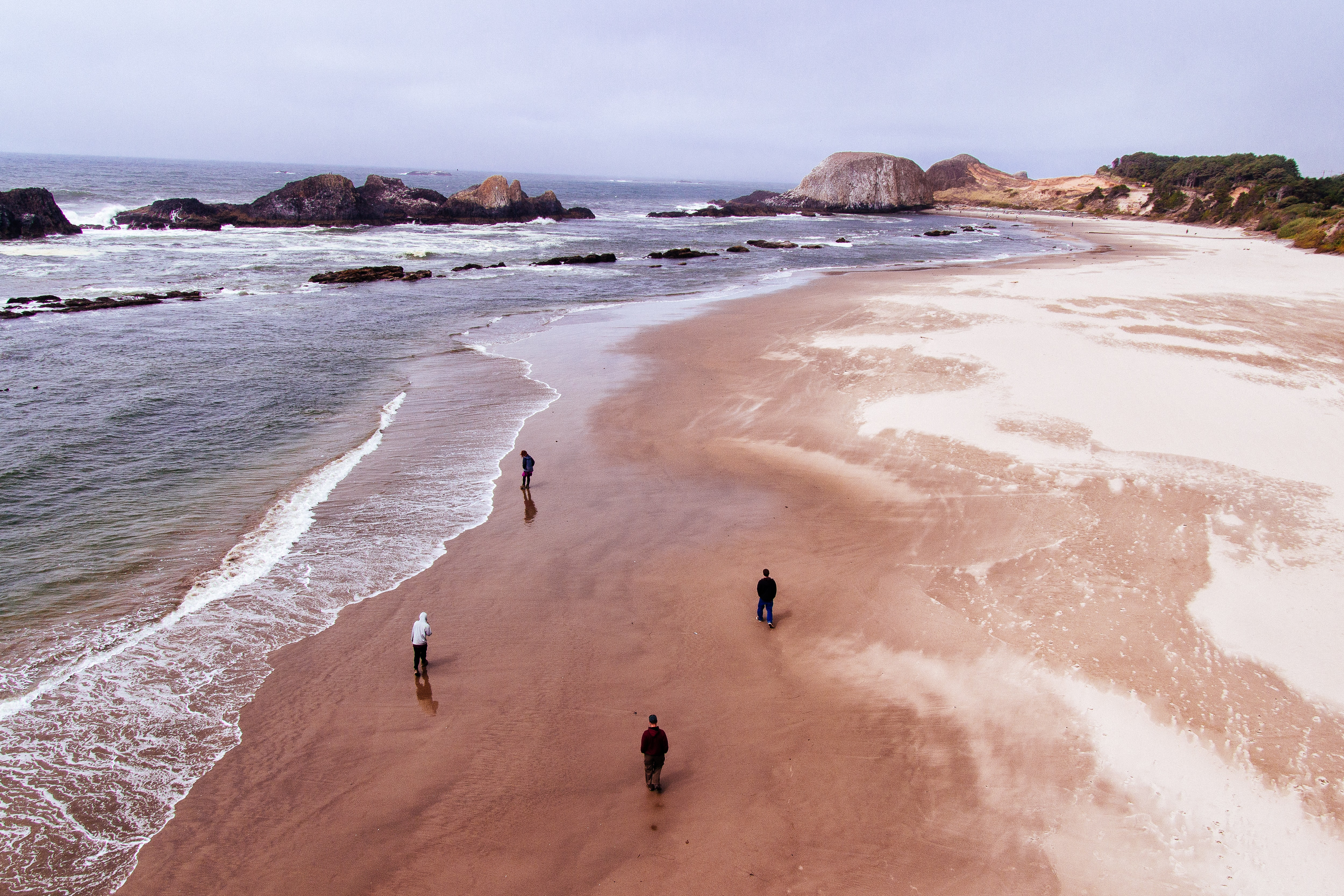 four people walking on beach shore aerial photography