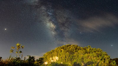 green-leafed trees under clear sky during nighttime milkyway teams background