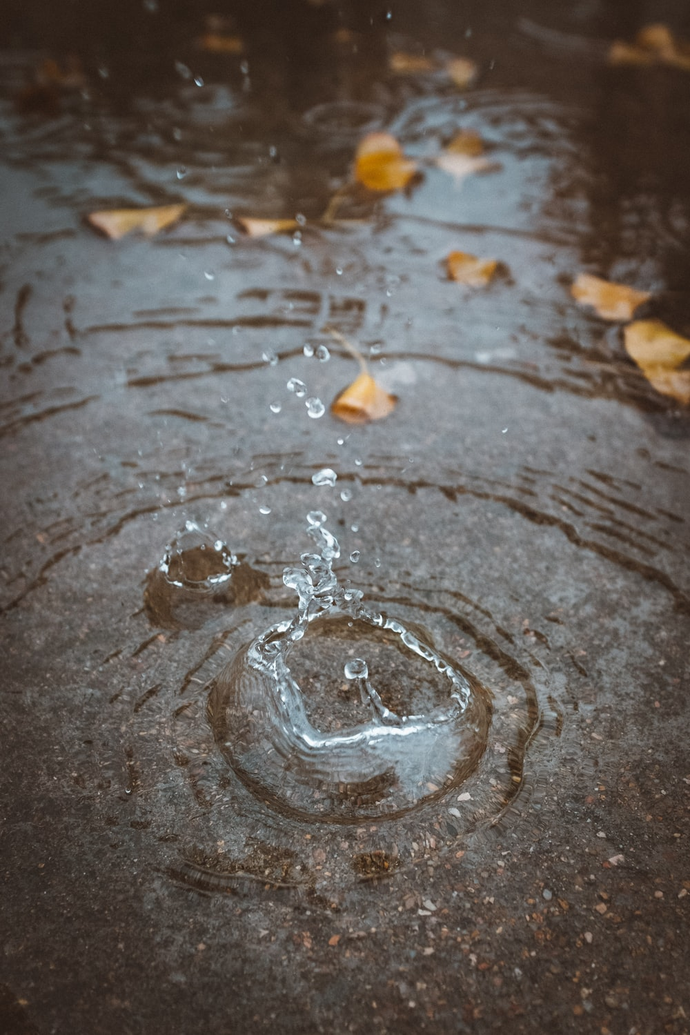 water ripple in closeup photography