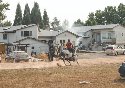 person riding horse near vehicles and houses