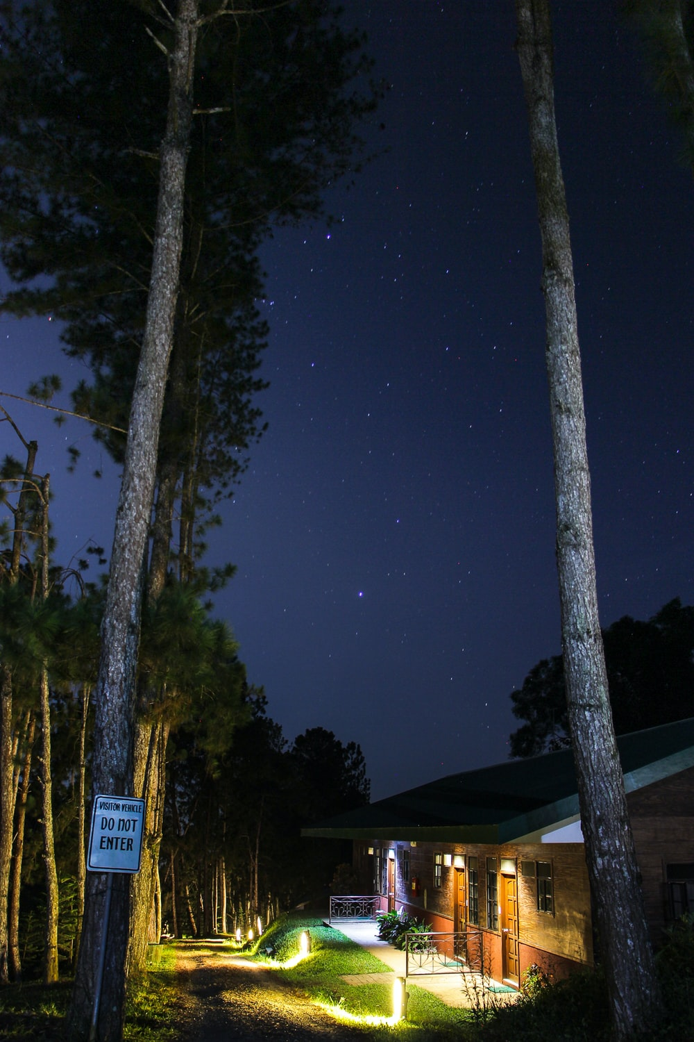 lighted cabins in forest