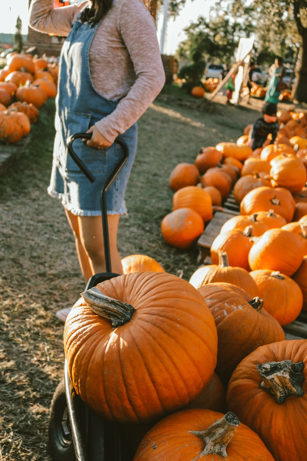 woman standing between pile of pumpkins during daytime