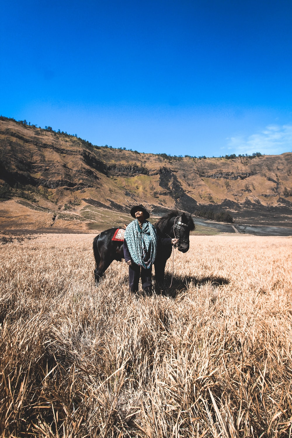 person stand beside black horse on brown grass field near brown cliff
