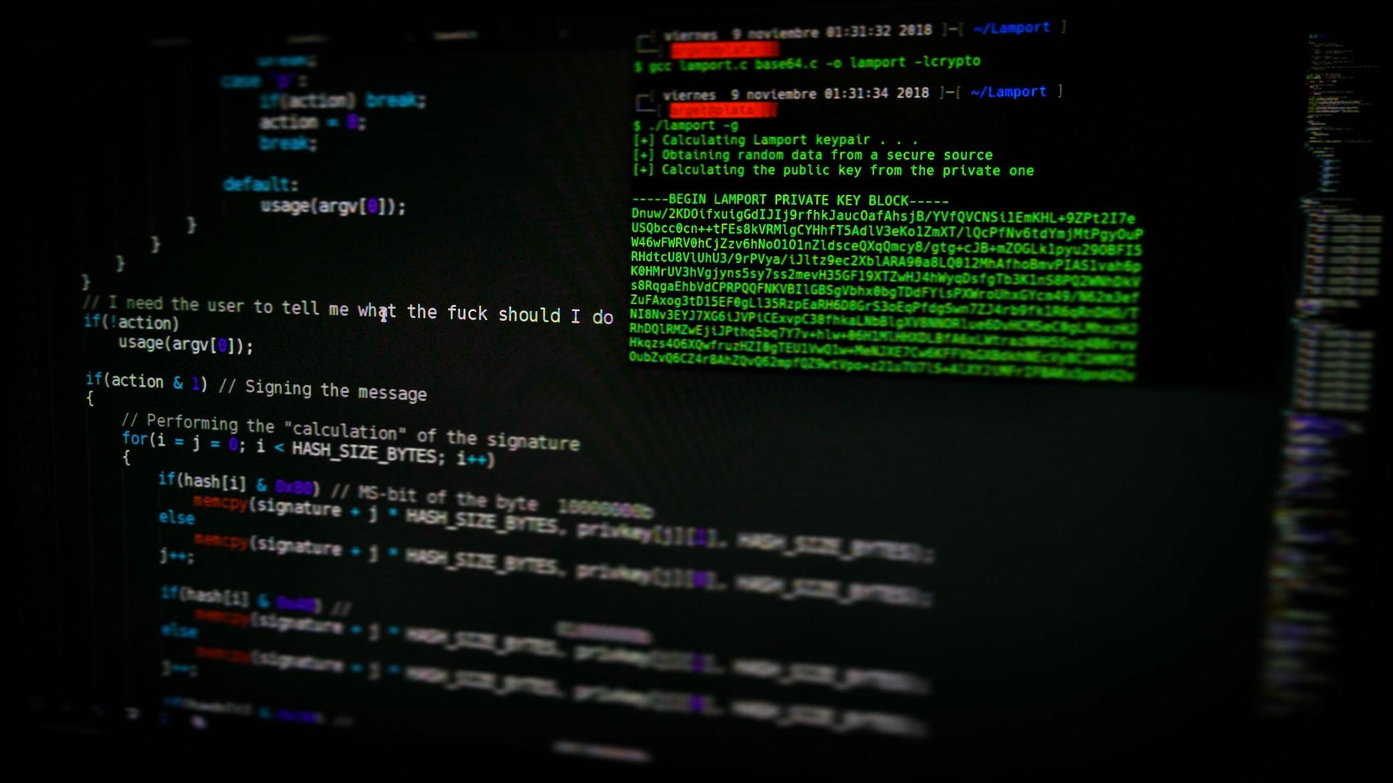 How to get IP address in Angular, React, VueJS, frontend Framework?
