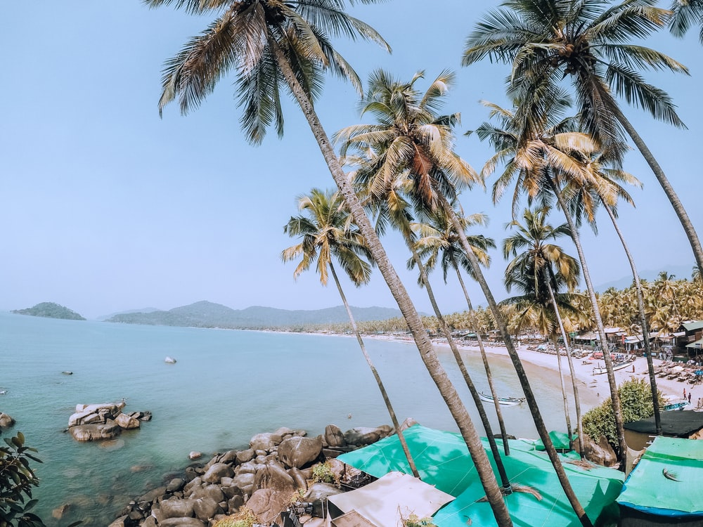 500+ Goa Pictures [HD] | Download Free Images on Unsplash