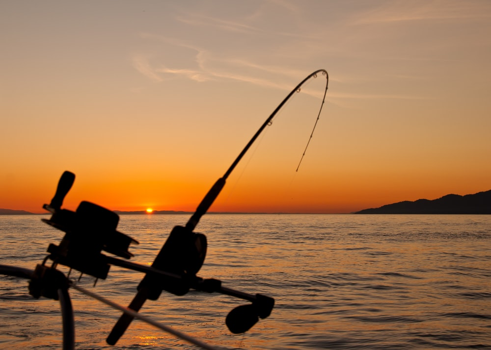 black fishing rod and body of water during golden hour