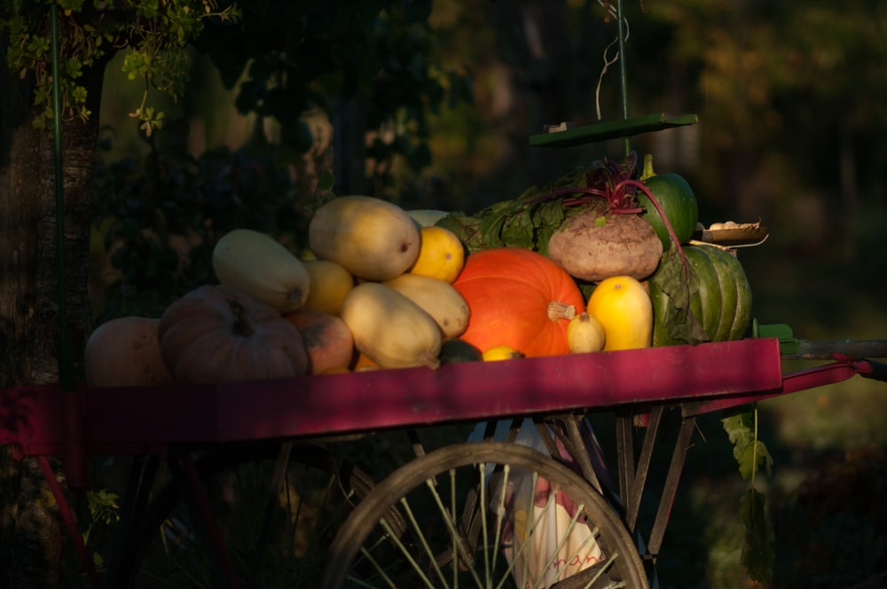 assorted vegetables on cart