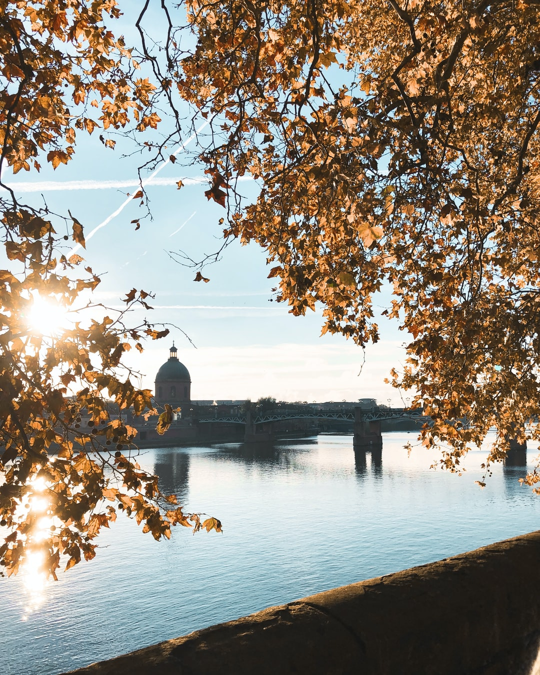 I was walking along the Garonne River in Toulouse, in the south of France, when the sun's rays hit my face through the leaves. I turned my head and this beautiful landscape was there in front of me.