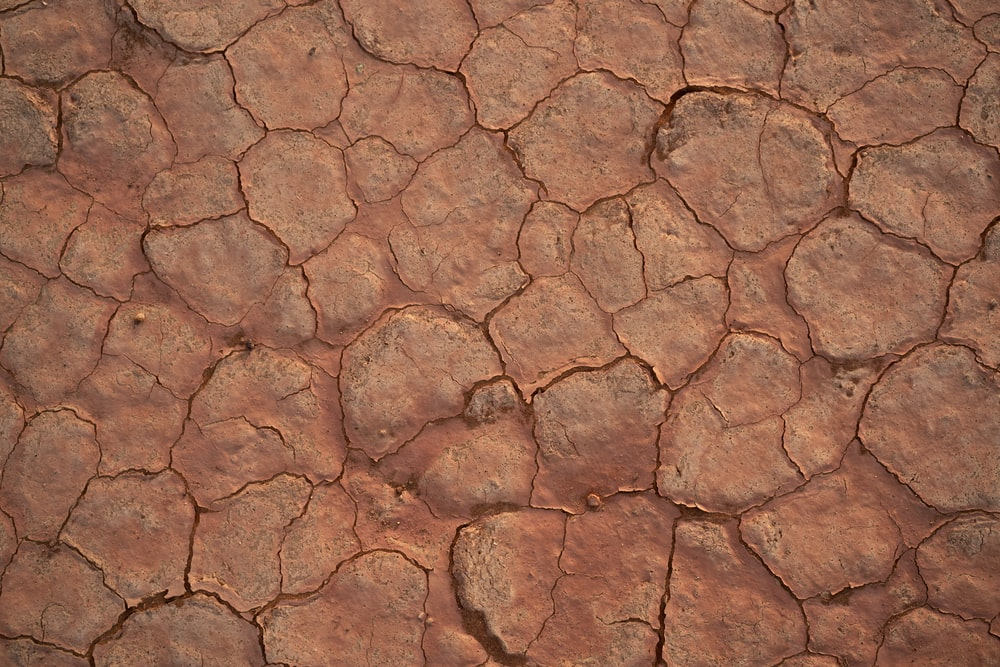 cracked brown soil