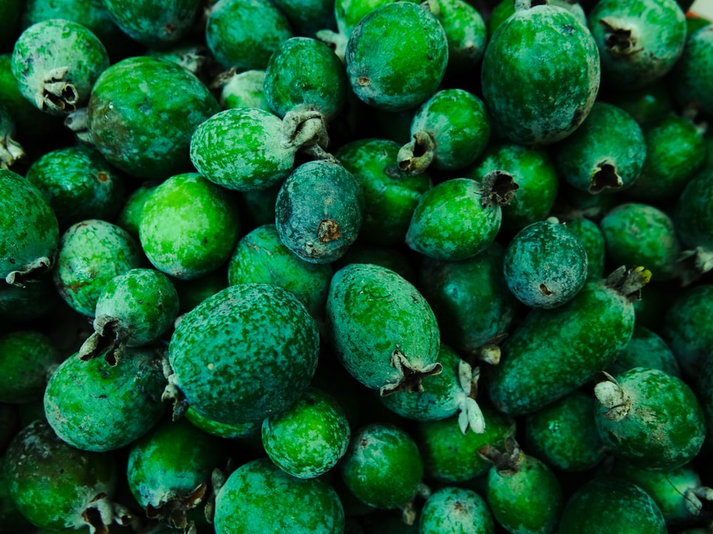 green round fruits lot