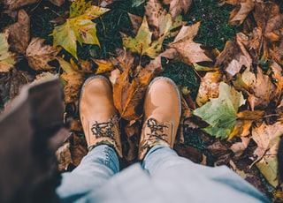 person in brown leather boots standing in ground surrounded with leaves
