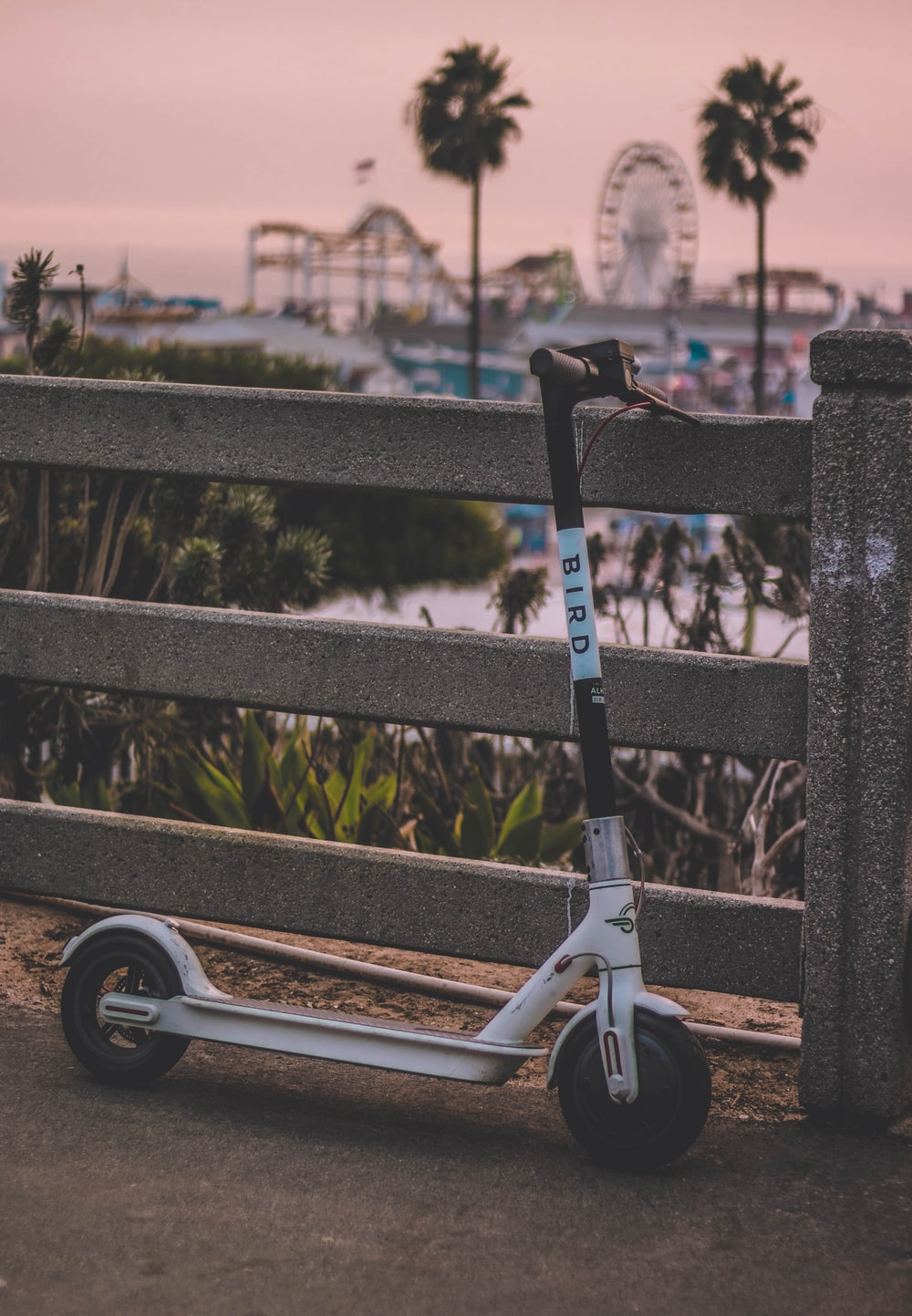 white Bird kick scooter parked on concrete wall overlooking park