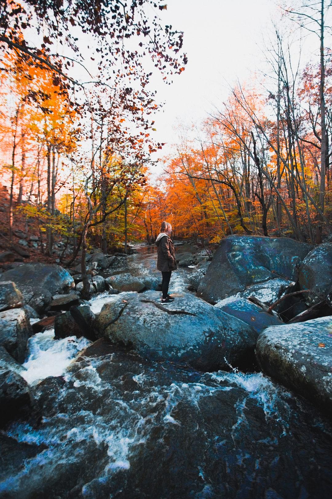 Creek with QT