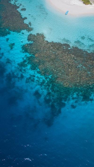 Maldivian lagoon.