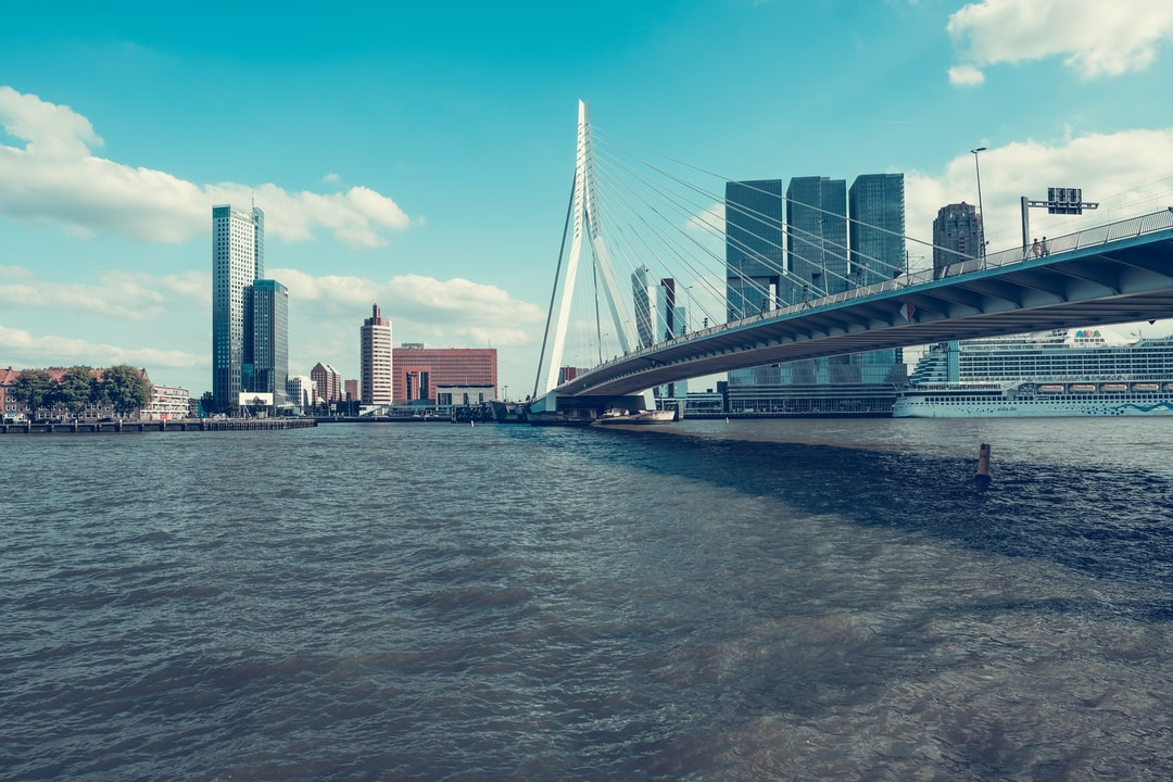 On my way to the photography museum in Rotterdam I took this fantastic picture of the Erasmus Brigde.